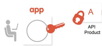 Um app cliente precisa de uma chave para chamar uma API associada a um produto de API.