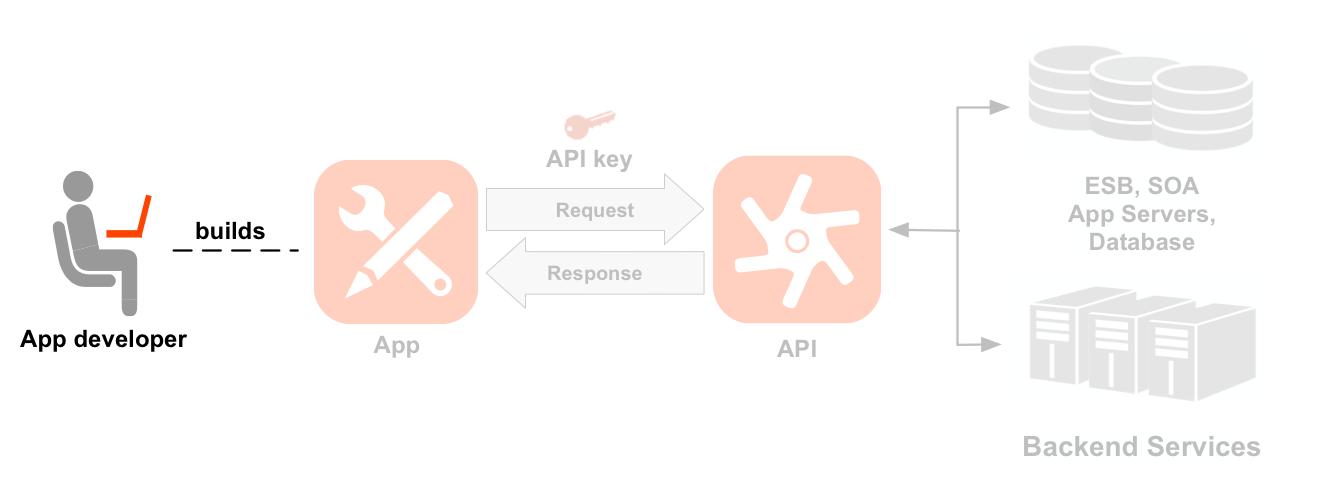 개발자, 앱, API, 백엔드 서비스를 보여주는 왼쪽에서 오른쪽 순으로 된 다이어그램 개발자 아이콘이 강조 표시됩니다. 강조 표시된 개발자에서 개발자가 빌드한 앱 아이콘까지 점선으로 연결됩니다. 앱을 오가는 화살표는 API 아이콘에 대한 요청 및 응답 흐름을 나타내며, 요청 위에 앱 키가 있습니다. API 아이콘 아래에는 2개의 API 제품(위치 제품과 미디어 제품)으로 묶은 2세트의 리소스 경로가 있습니다.     위치 제품에는 /countries, /cities, /languages에 대한 리소스가 있으며 미디어 제품에는 /books, /books, /movies에 대한 리소스가 있습니다. API 오른쪽에는 데이터베이스, 엔터프라이즈 서비스 버스, 앱 서버, 일반 백엔드 등 API가 호출하는 백엔드 리소스가 있습니다.