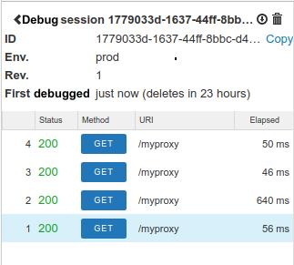 Captured debug requests