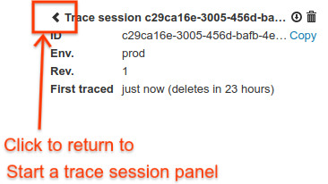 Back arrow that returns you to the Start a debug session panel