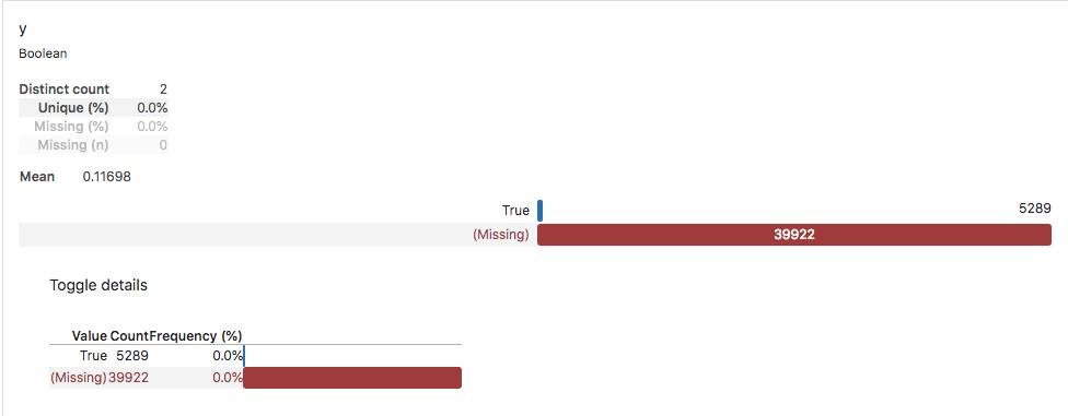 Screenshot of Pandas Profiling report data.