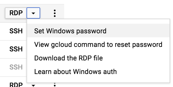 Setting the Windows password in the Cloud Console.