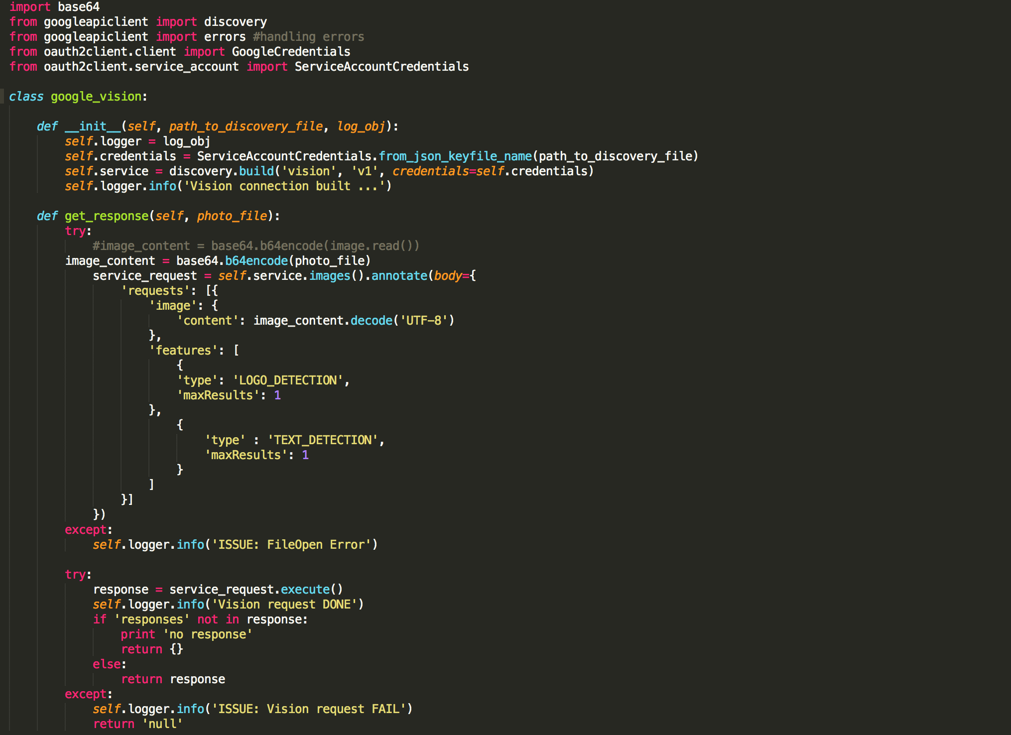 Code snippet showing call to the Vision API