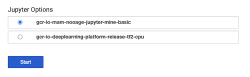 List of Jupyter notebook server options.