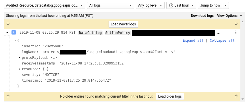 Logs viewer SetIamPolicy detail.