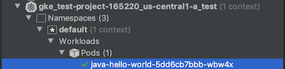 Pod のラベルの横にある緑色のチェックマークで確認できる通り、Pod のステータスは正常です