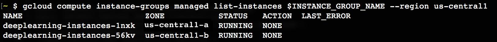 Screenshot of the running instance