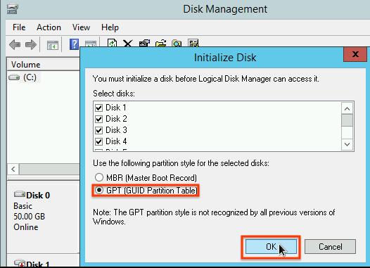在磁碟初始化視窗中,選取磁碟分區配置。
