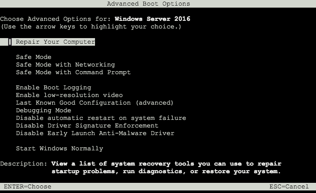Screen capture of Windows advanced boot options