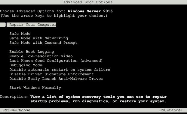 Screen capture of Windows advanced boot options
