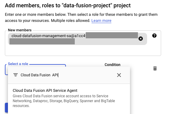 Paste the service account and add IAM role.