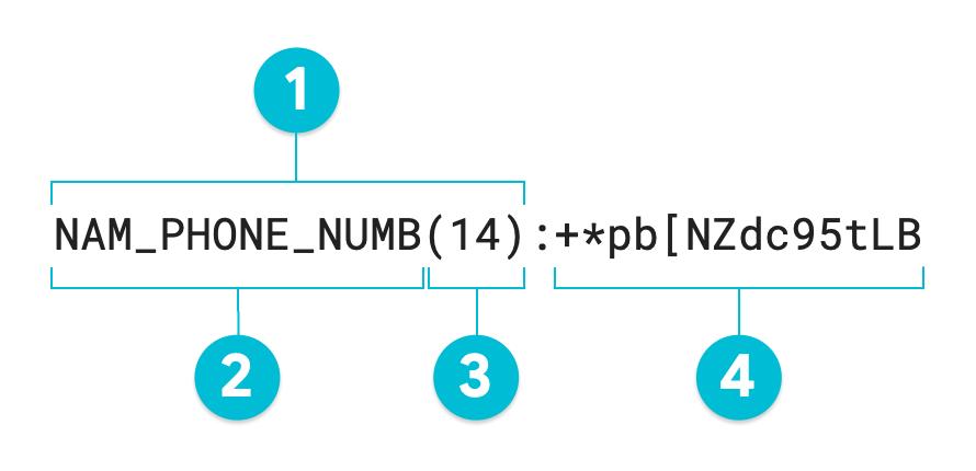 Diagrama anotado de um valor tokenizado usando o formato que preserva          o método de transformação de criptografia.