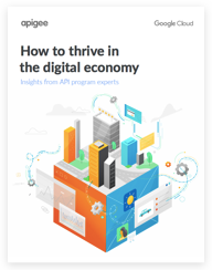 "E-Book ""How to Thrive in the Digital Economy"""