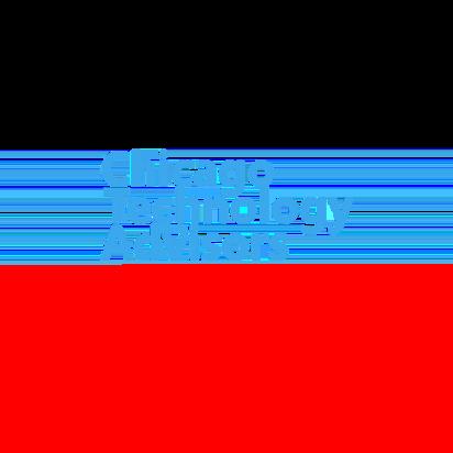 ChicagoTechnologyAdvisors
