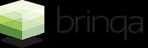 Logotipo de Brinqa