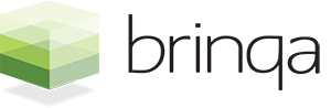 Brinqa 標誌