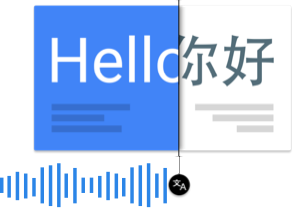 快速和动态的翻译功能