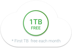 first 1 TB of data process each month is free