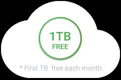 毎月 1 TB までのデータ処理は無料