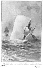 Moby Dick 图书封面