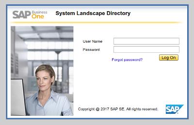 SAP Business One home