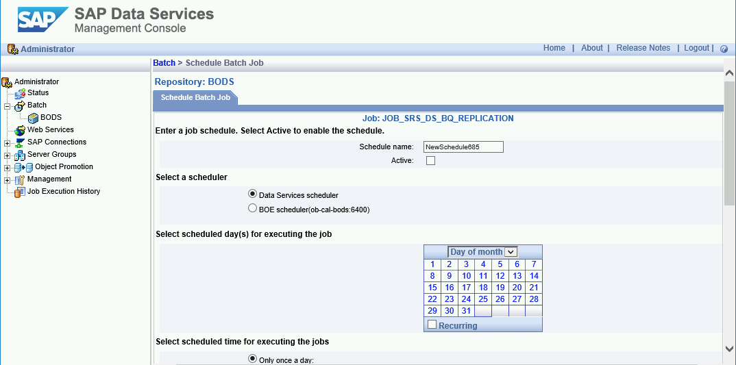 SAP Data Services Management Console の [Schedule Batch Job] タブの画面キャプチャ。