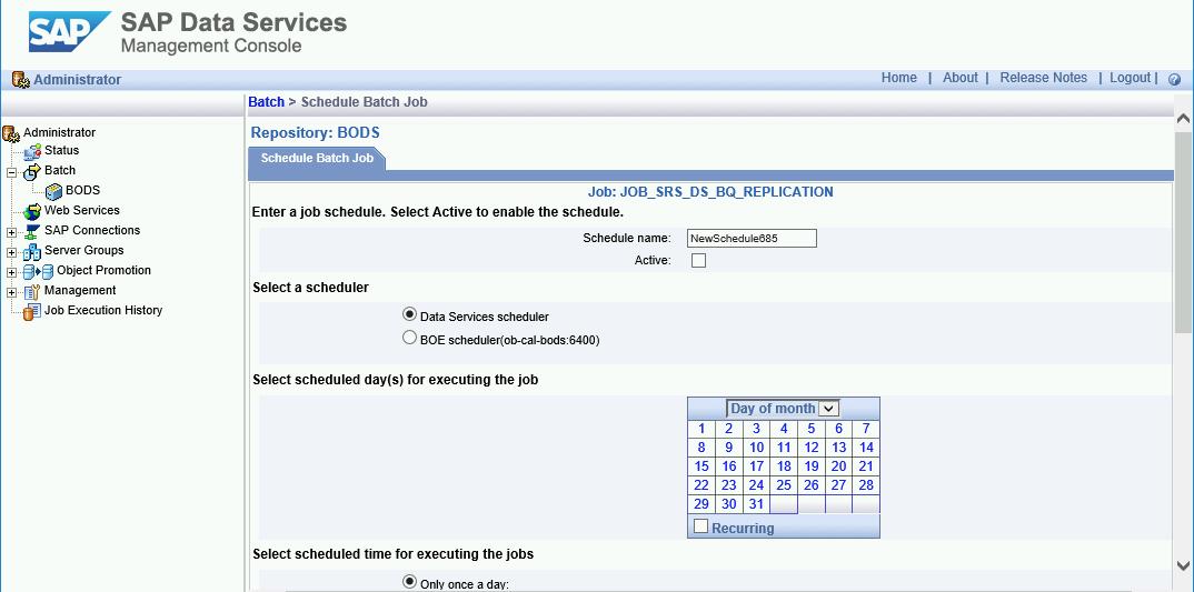 """Uma captura de tela da guia """"Schedule Batch Job"""" no console de gerenciamento do SAP Data Services."""