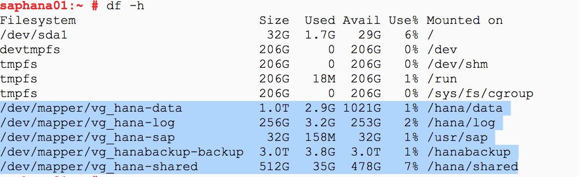 Screenshot: Vom Skript erstellte Daten-Volumes
