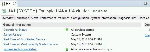 SAP HANA Studio의 Overview(개요) 탭 스크린샷