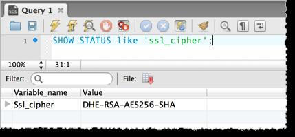 测试连接是否通过 SSL。