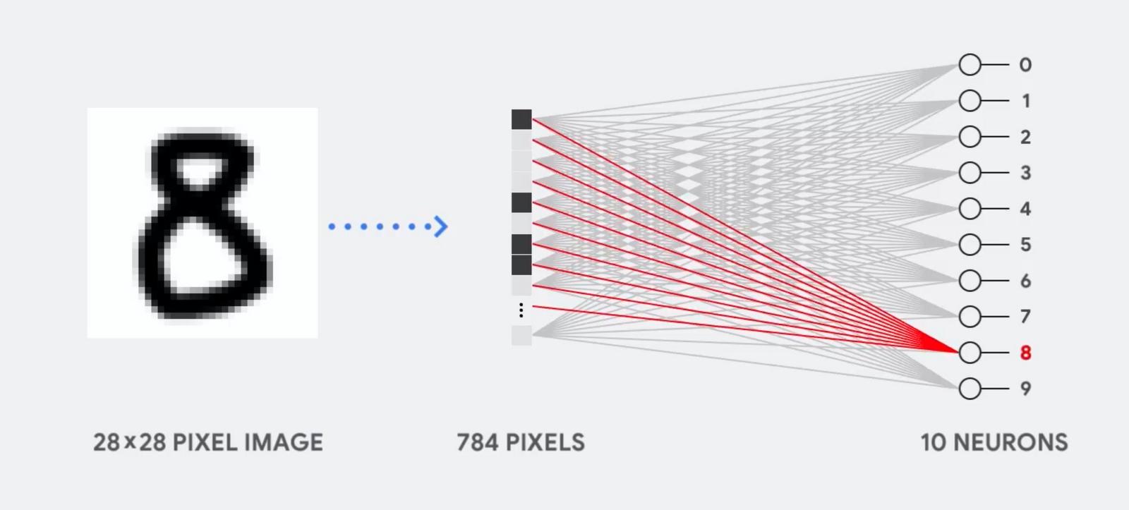 用于数字处理的神经网络的示意图