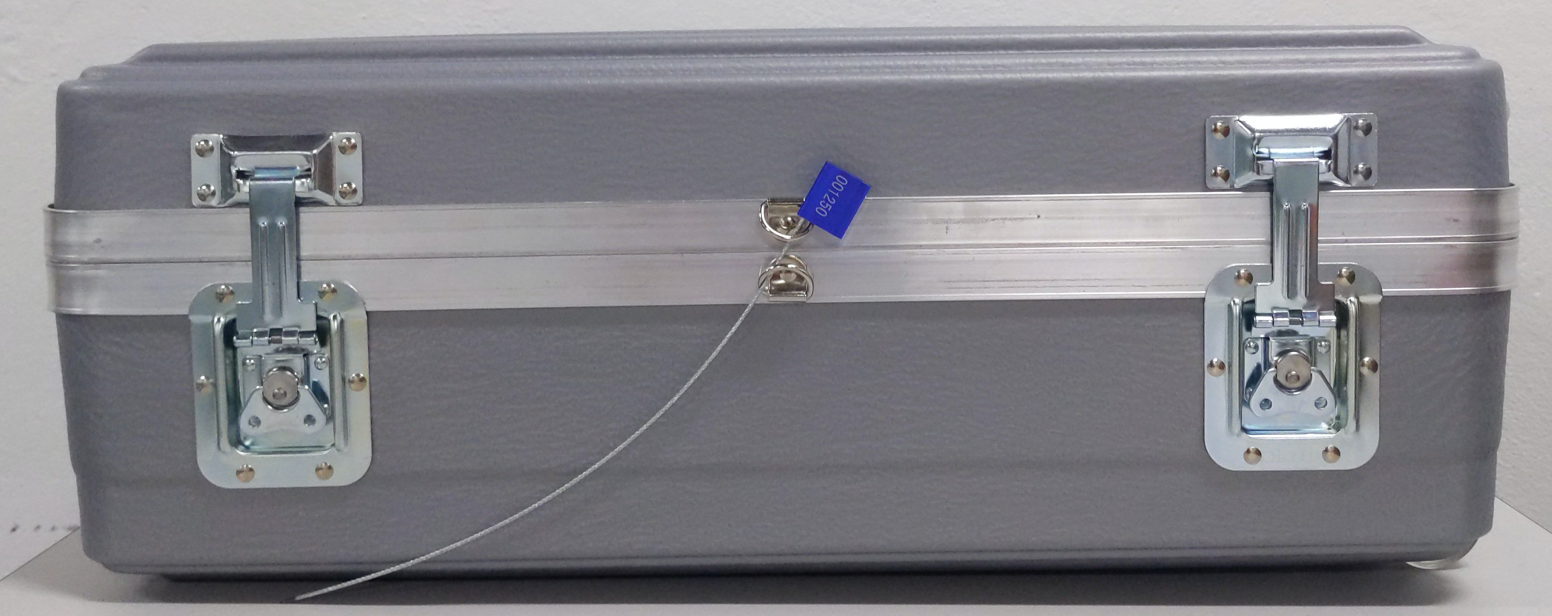 Inserting the wire tamper-evident tag through the   shipping case's D-rings