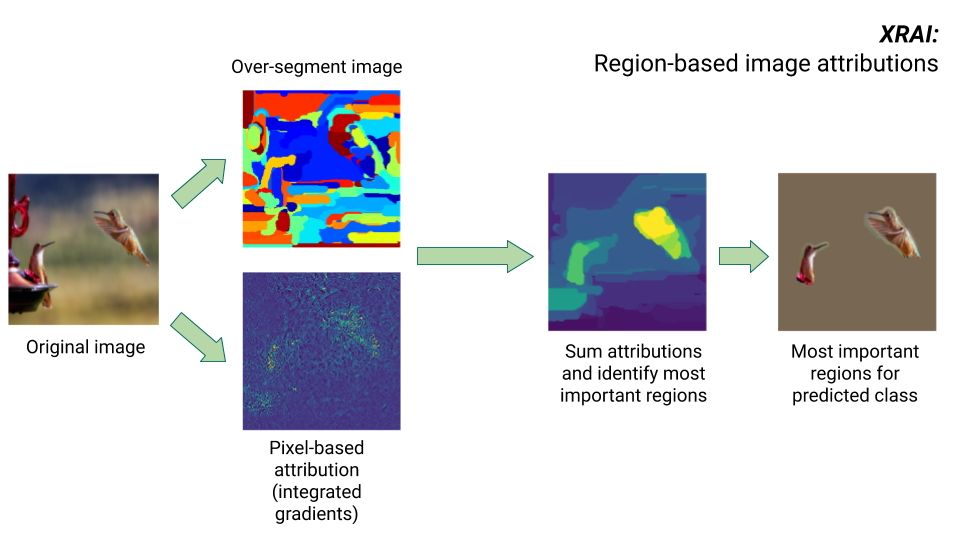 Imágenes en las que se muestran los pasos del algoritmoXRAI