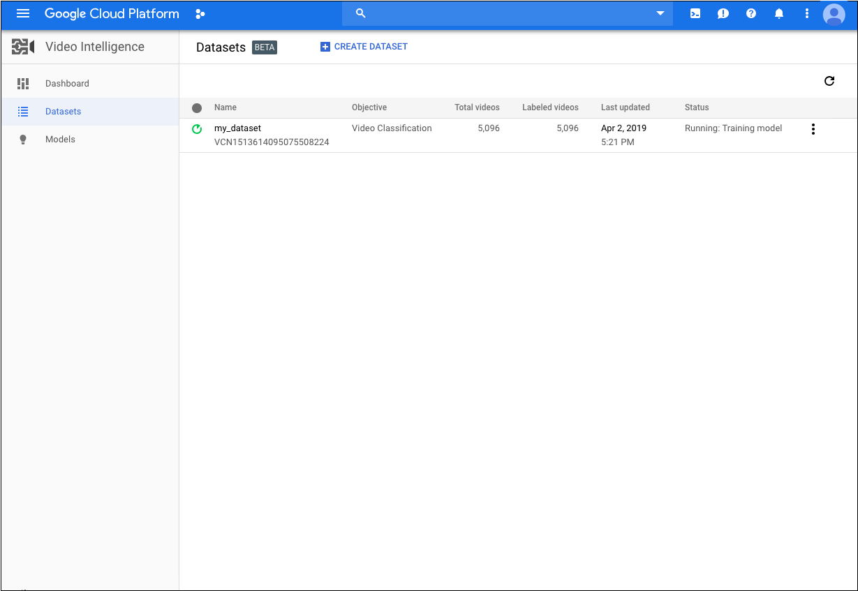 Datasets page in Google Cloud Console
