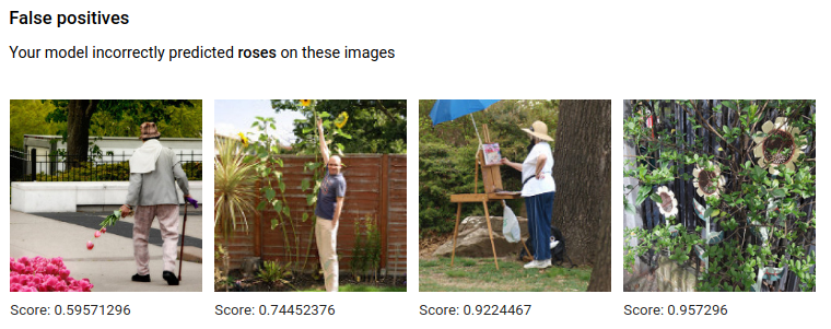 Falsch positive Bilder