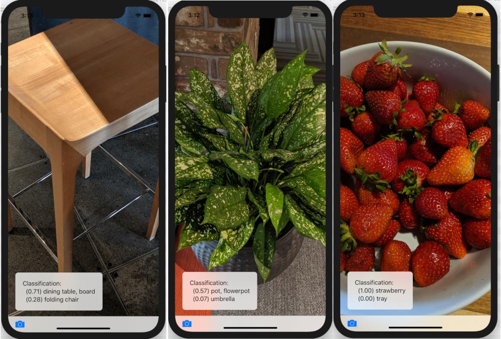 classifications using the generic original app: furniture, fruit, plants