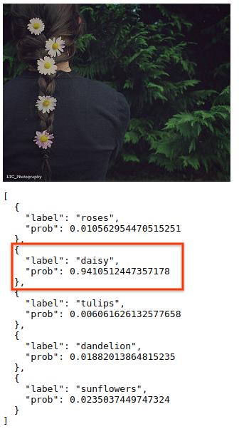 브라우저에 표시된 TensorFlow.js 예측