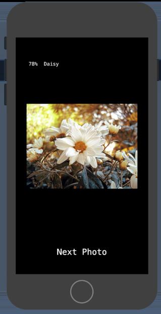 Captura de pantalla de un dispositivo móvil del producto final