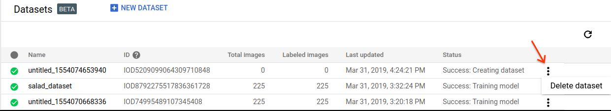 IU de Borra un conjunto de datos