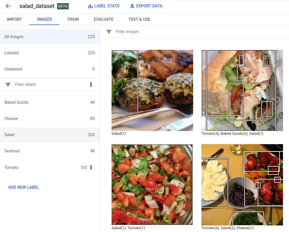 Annotating imported training images | Cloud AutoML Vision
