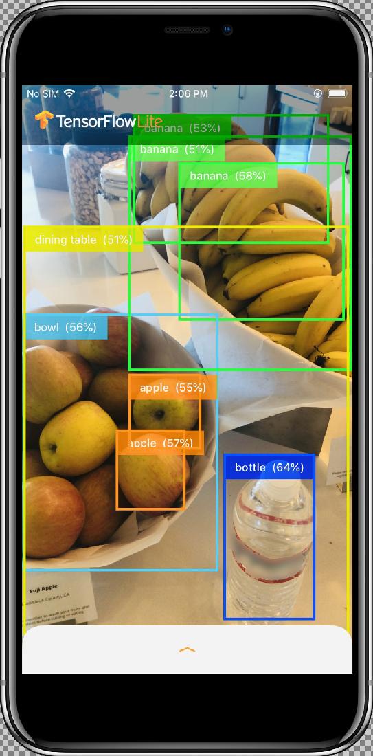 Edge TF Lite iOS tutorial | Cloud AutoML Vision Object