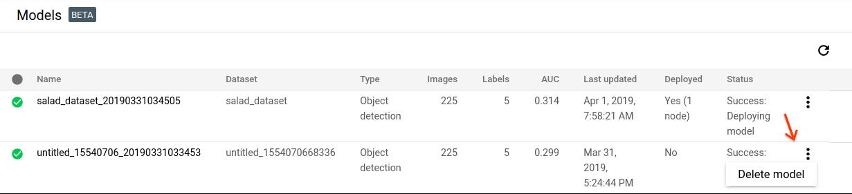 Deleting a model image